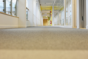 Commercial Carpet Cleaning Oak Ridge FL