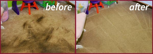 Carpet Cleaning Company Oak Ridge FL