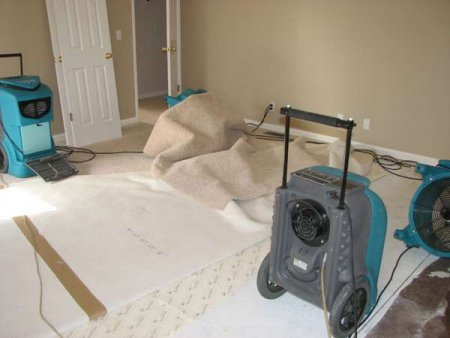Water Damage Mitigation Ocoee FL