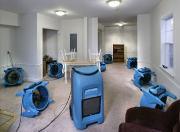Water Damage Orlando FL - Flood Damage Repair, Restoration - All Clean Carpet & Upholstery Inc - water